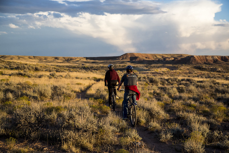 Two adults cycling in casual clothes on bicycles across moorland in the sunlight one evening.